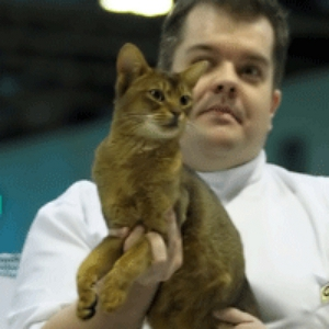 Leon Best of Variety decision making at Supreme Cat Show 2010